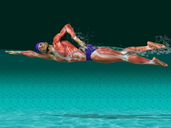 Vpliv plavanja na telo